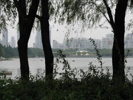 Century Park in Pudong China (Shanghai)
